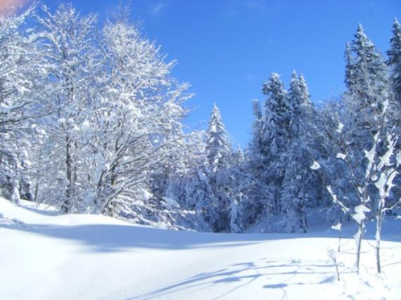 409cdb67 7b44 4bf3 90e3 ccaed60f133a Fit und Gesund durch den Winter