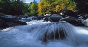 Samina Natur Fluß
